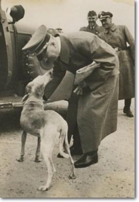 Hitler and stray dog, shadow