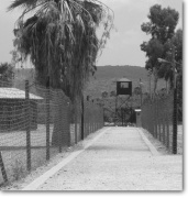 atlit-concentration-camp