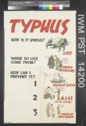Typhus - how is it spread